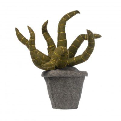 KIDSDEPOT Plant - Sanseveria green